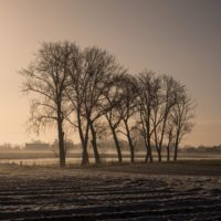 mistige zonsopgang in een winters ladschap